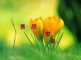 教师节的祝福语句简单
